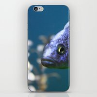 blue fish iPhone & iPod Skin