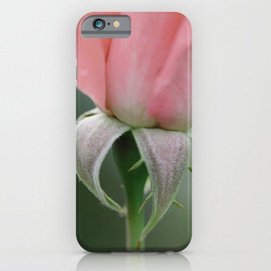 Rose at Twilight iPhone & iPod Case