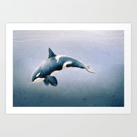 Orcinus Orca Art Print
