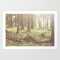 The Magical Forrest Art Print