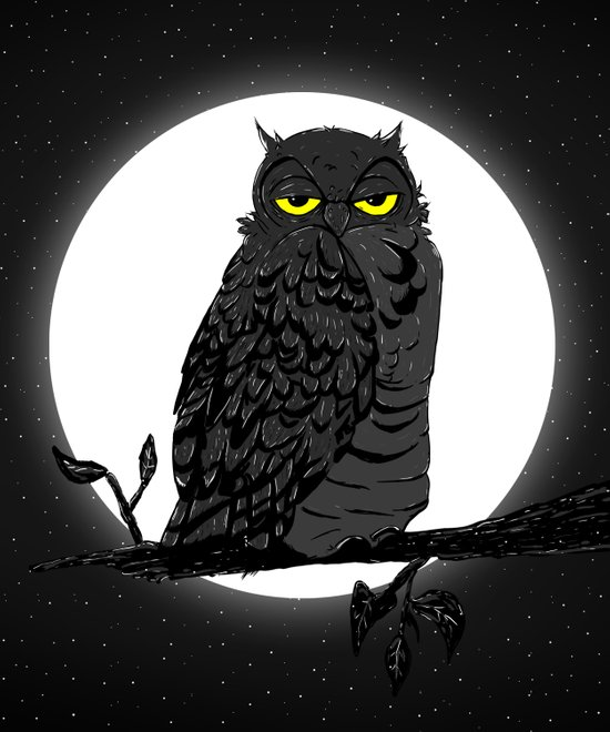 Night Owl V. 2 Canvas Print