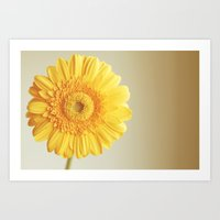 Sunshine and lollipops  Art Print