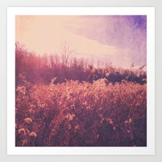 Field of Dreams Art Print
