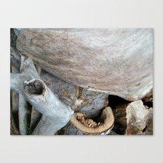 Wood Photography Canvas Print