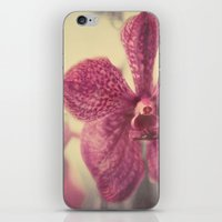 Orchid #3 iPhone & iPod Skin