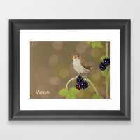Wren Framed Art Print