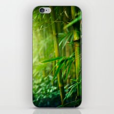 Bamboo Jungle iPhone & iPod Skin
