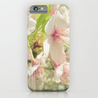 cherry blossom iPhone & iPod Cases featuring Cherry Blossom by Cassia Beck