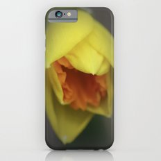 Easter Daffodil iPhone 6 Slim Case