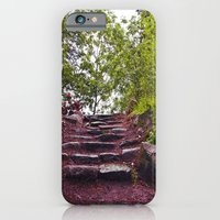 Stone steps iPhone 6 Slim Case