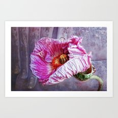 wisdom and beauty Art Print