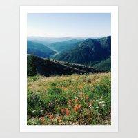 Gifford Pinchot National Forest Art Print