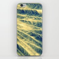 Afterfeathers iPhone & iPod Skin