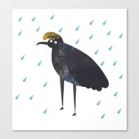 U is for Umbrella bird Canvas Print