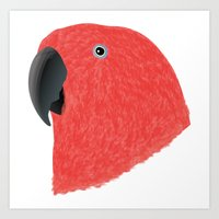 Amazon Eclectus [Female] Art Print