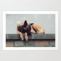 Take A Nap Art Print