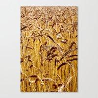 High grain image Canvas Print