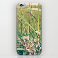 Flowers At The Beach iPhone & iPod Skin