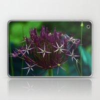 Allium Christophii Laptop & iPad Skin