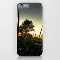 Slice of the Sky iPhone 6 Slim Case