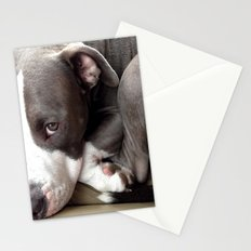 Pretty Pibble  Stationery Cards
