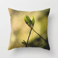 Spring at Nesmith Point Throw Pillow