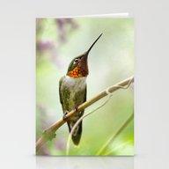 Hummingbird Passion Stationery Cards