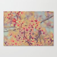 Vintage Blossoms - In Me… Canvas Print