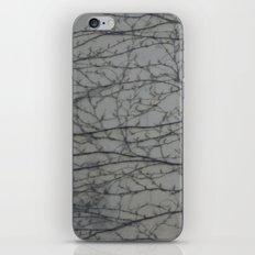 Breached iPhone & iPod Skin