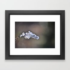 Flower stem Framed Art Print