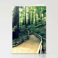Muir Woods Path Stationery Cards