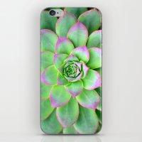 The Longest Bloom iPhone & iPod Skin