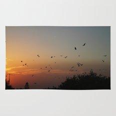migrating birds Rug