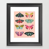 Lepidoptery No. 1 By And… Framed Art Print