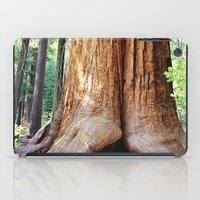 Trail of 100 Giants iPad Case