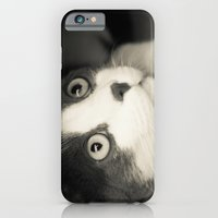 What do you think Mr Cat? iPhone 6 Slim Case