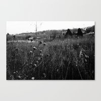 The Maxwell Canvas Print