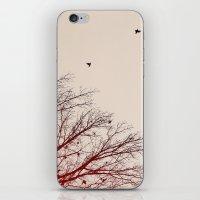 Umber Days iPhone & iPod Skin