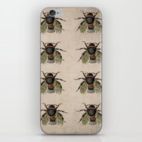 Vintage Bees iPhone & iPod Skin