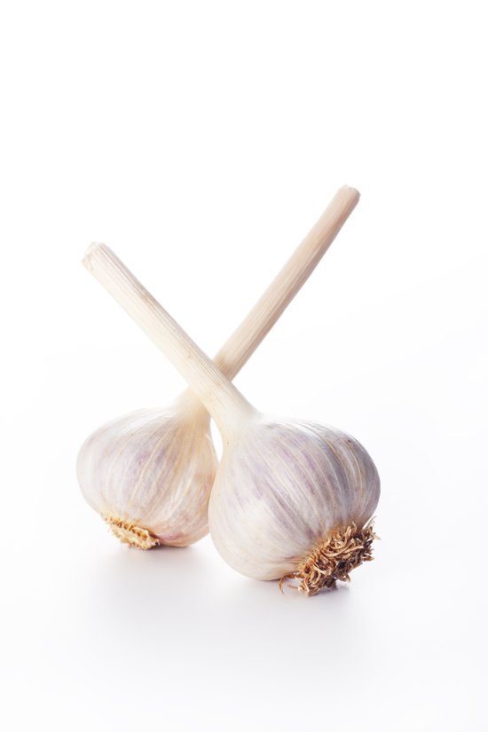 Single Garlic Clove On White Art Print