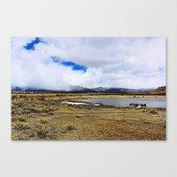 Rural Colorado Canvas Print