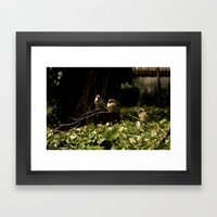 Birds of a Feather. Framed Art Print