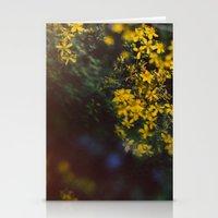 Floral Daze Stationery Cards