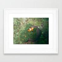Nemo has a sibling Framed Art Print