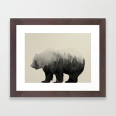 Bear In The Mist Framed Art Print