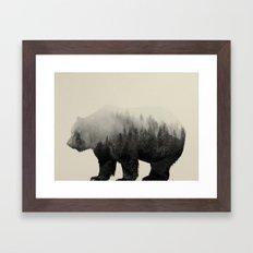 Bear In The Mist Framed Art Print