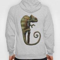 Its a Chameleon Hoody