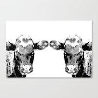 Black Cows Canvas Print