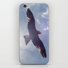 Red Kite iPhone & iPod Skin