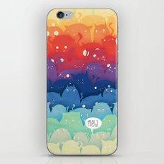 Cats Galore!  iPhone & iPod Skin